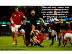 Image for Can business learn from the Rugby World Cup?